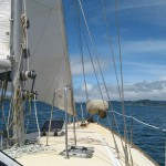 Sailing on Whangaroa harbour